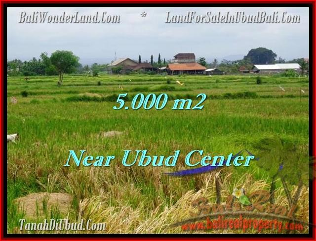 Affordable 5,000 m2 LAND IN UBUD FOR SALE TJUB474