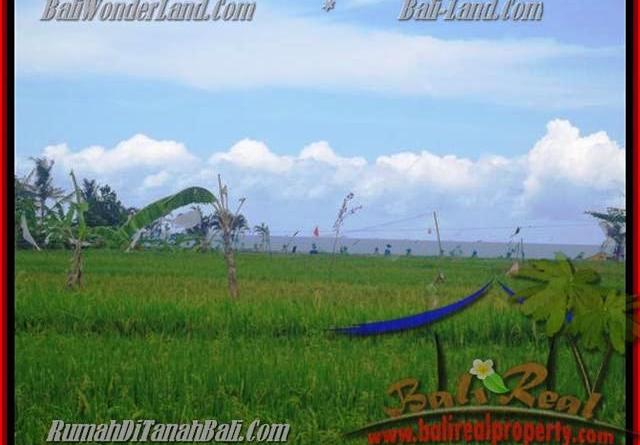 Magnificent PROPERTY LAND FOR SALE IN Canggu Cemagi BALI TJCG140