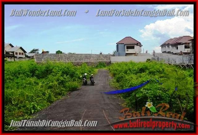 FOR SALE Exotic PROPERTY LAND IN Canggu Pererenan TJCG142