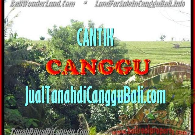 Affordable 1.700 m2 LAND SALE IN Canggu Pererenan BALI TJCG143