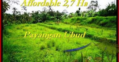Beautiful 27,000 m2 LAND FOR SALE IN UBUD BALI TJUB469