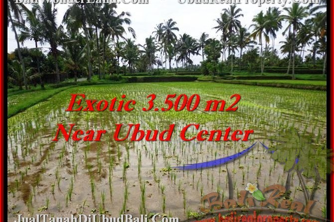 Affordable PROPERTY 3,500 m2 LAND IN UBUD BALI FOR SALE TJUB477