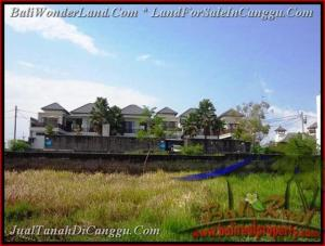 LAND FOR SALE IN Canggu Batu Bolong TJCG160