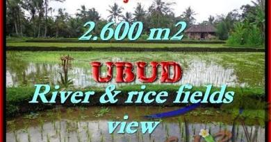 FOR SALE Magnificent PROPERTY 2,600 m2 LAND IN UBUD BALI TJUB421