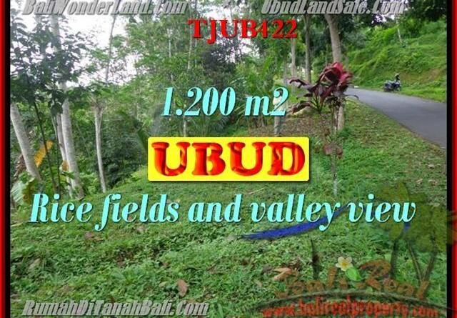 FOR SALE Magnificent PROPERTY 1,200 m2 LAND IN UBUD BALI TJUB422