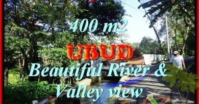 Beautiful 400 m2 LAND IN UBUD BALI FOR SALE TJUB425