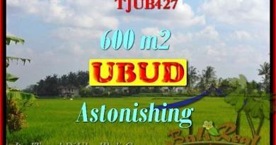 Magnificent 600 m2 LAND FOR SALE IN UBUD BALI TJUB427