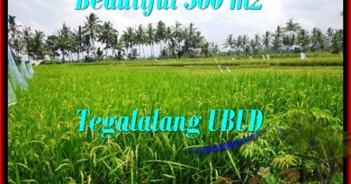 FOR SALE Beautiful LAND IN Ubud Tegalalang BALI TJUB482