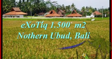 Beautiful UBUD BALI 1,500 m2 LAND FOR SALE TJUB488