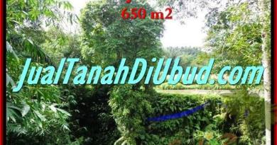 LAND FOR SALE IN Sentral Ubud BALI TJUB417