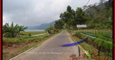 Beautiful PROPERTY LAND SALE IN TABANAN TJTB164