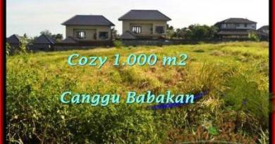 Beautiful 1,000 m2 LAND IN CANGGU FOR SALE TJCG178