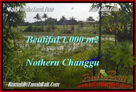 1,000 m2 LAND SALE IN Canggu Batu Bolong  BALI TJCG180