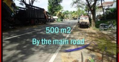Affordable PROPERTY 500 m2 LAND SALE IN TABANAN BALI TJTB202