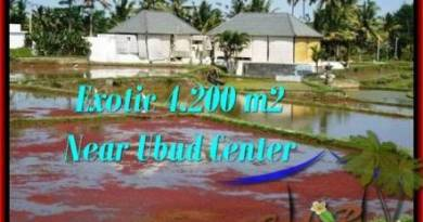 Magnificent PROPERTY UBUD LAND FOR SALE TJUB502