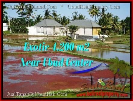 FOR SALE Magnificent LAND IN Sentral Ubud BALI TJUB502