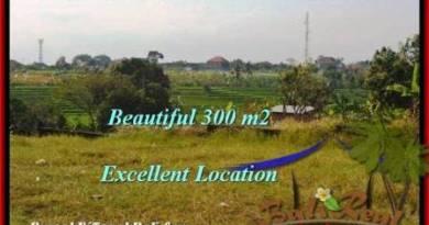 LAND FOR SALE IN Canggu Brawa TJCG185