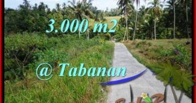 Beautiful TABANAN BALI 3,000 m2 LAND FOR SALE TJTB205