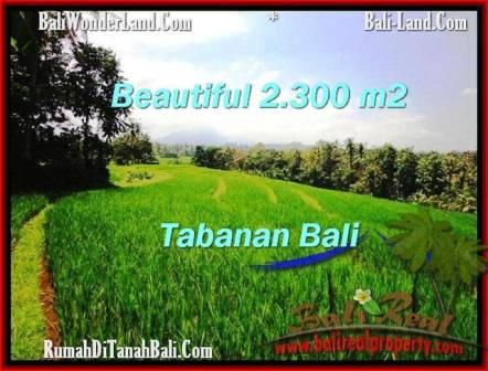 Beautiful PROPERTY 2,300 m2 LAND IN Tabanan Selemadeg FOR SALE TJTB209