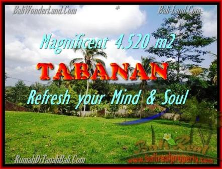 Affordable PROPERTY LAND FOR SALE IN TABANAN TJTB154