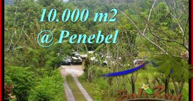Beautiful 10,000 m2 LAND SALE IN TABANAN BALI TJTB214