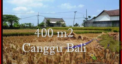 Affordable PROPERTY LAND FOR SALE IN Canggu Pererenan BALI TJCG188