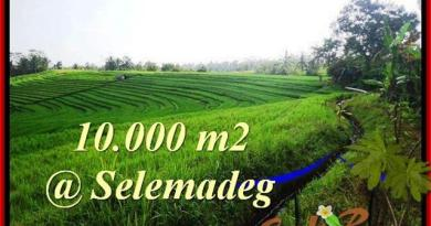 Magnificent PROPERTY 10,000 m2 LAND IN Tabanan Selemadeg FOR SALE TJTB217