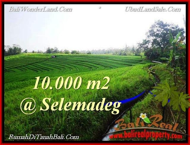 Beautiful 10,000 m2 LAND SALE IN TABANAN BALI TJTB217