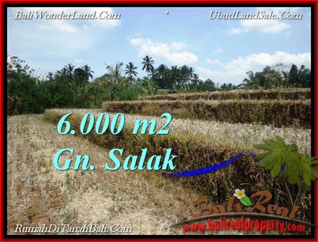 Magnificent PROPERTY TABANAN LAND FOR SALE TJTB221