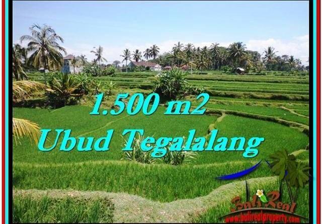 Affordable PROPERTY 1,500 m2 LAND FOR SALE IN Ubud Tegalalang TJUB528