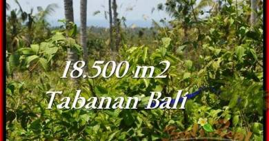 FOR SALE Exotic LAND IN Tabanan Selemadeg BALI TJTB232