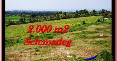 Exotic PROPERTY 2,000 m2 LAND FOR SALE IN Tabanan Selemadeg TJTB228