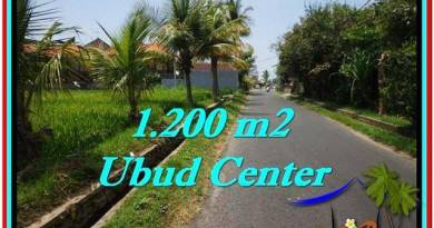 FOR SALE Exotic LAND IN Sentral Ubud BALI TJUB525