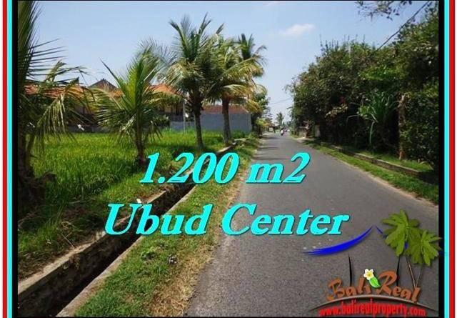 FOR SALE Exotic LAND IN Sentral Ubud BALI TJUB525