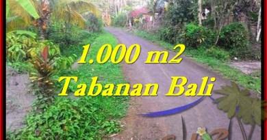 Affordable PROPERTY LAND FOR SALE IN TABANAN TJTB242