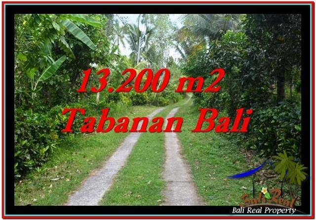 Magnificent TABANAN BALI 13,200 m2 LAND FOR SALE TJTB255