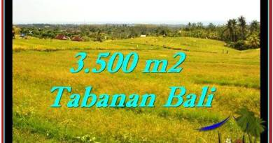 Exotic TABANAN BALI 3,500 m2 LAND FOR SALE TJTB259