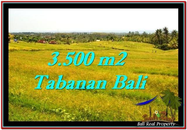 Beautiful 3,500 m2 LAND SALE IN TABANAN BALI TJTB259