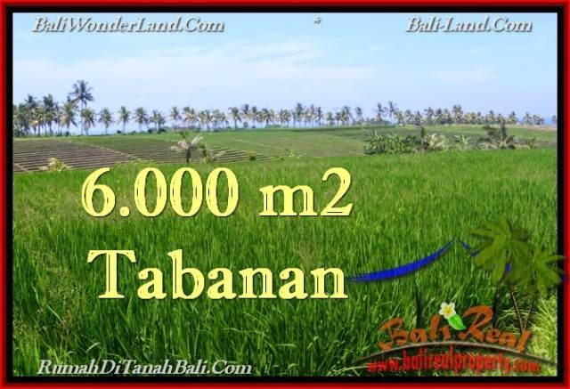 Exotic 6,000 m2 LAND IN TABANAN BALI FOR SALE TJTB267