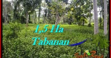 Magnificent PROPERTY TABANAN LAND FOR SALE TJTB272
