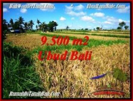FOR SALE Affordable PROPERTY 9,500 m2 LAND IN Sentral Ubud TJUB548