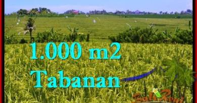 FOR SALE 1,000 m2 LAND IN TABANAN TJTB266