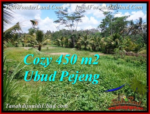 Exotic PROPERTY UBUD LAND FOR SALE TJUB535