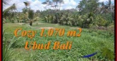 Affordable 1,070 m2 LAND IN UBUD BALI FOR SALE TJUB536