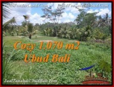 Affordable 1,070 m2 LAND IN UBUD BALI FOR SALE TJUB536