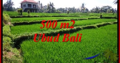 Beautiful LAND IN UBUD FOR SALE TJUB543