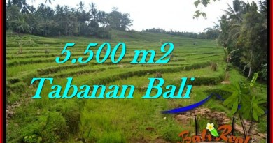Affordable PROPERTY LAND IN TABANAN FOR SALE TJTB280