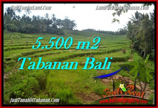 Affordable LAND SALE IN Tabanan Penebel BALI TJTB280