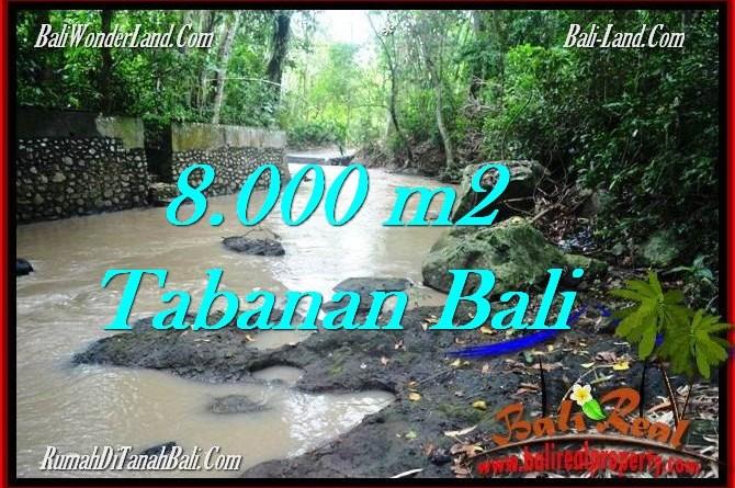 8,000 m2 LAND FOR SALE IN TABANAN BALI TJTB287