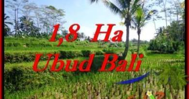 Affordable UBUD BALI 16,000 m2 LAND FOR SALE TJUB553